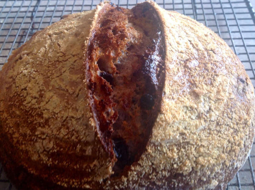 Walnut & raisin sourdough boule