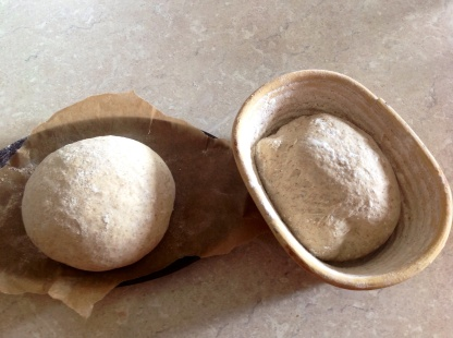 boule (left) & banneton-shaped loaf about to prove