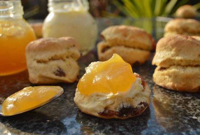 Mini lemon & clotted cream scones