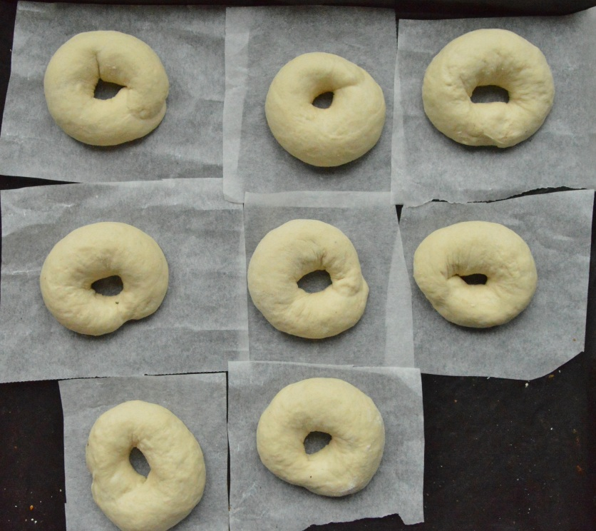 some of the plain bagels, ready to prove