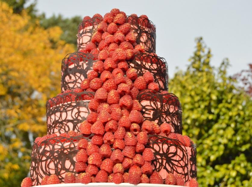 Raspberry cascade cake