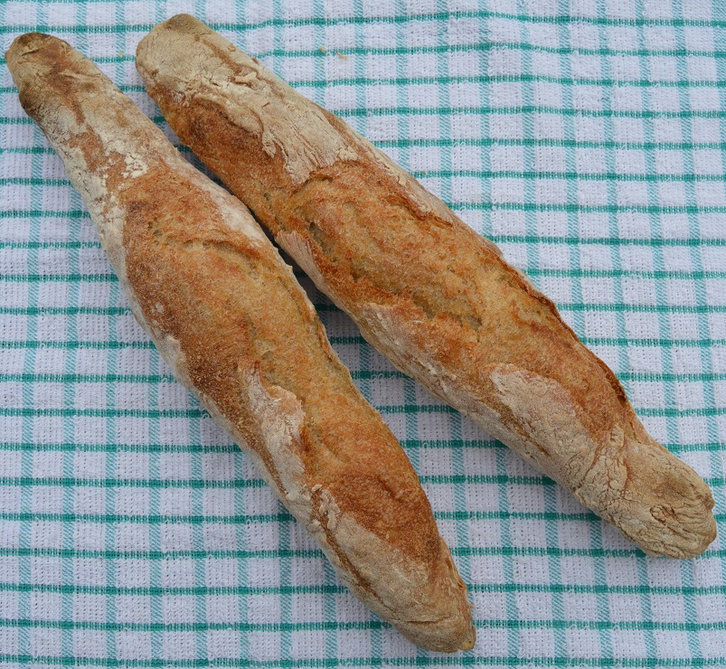 baguettes: without much scoring
