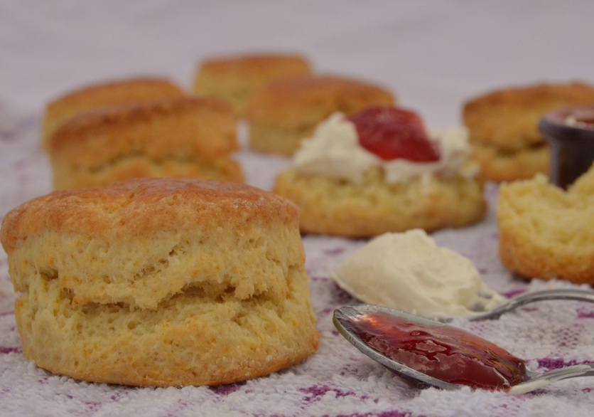 Traditional scones: quick, easy and very satisfying to eat!