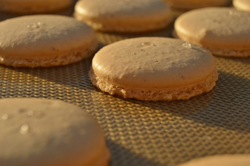 "baked macaron shells: with the ""feet"" as desired!"
