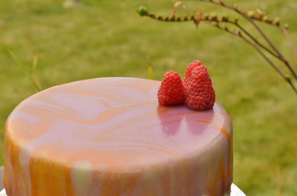 Berry Dome Cake Recipe