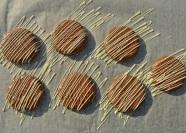 Salted caramel shortbreads