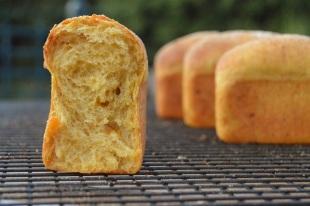 Spiced pumpkin bread: mini loaves