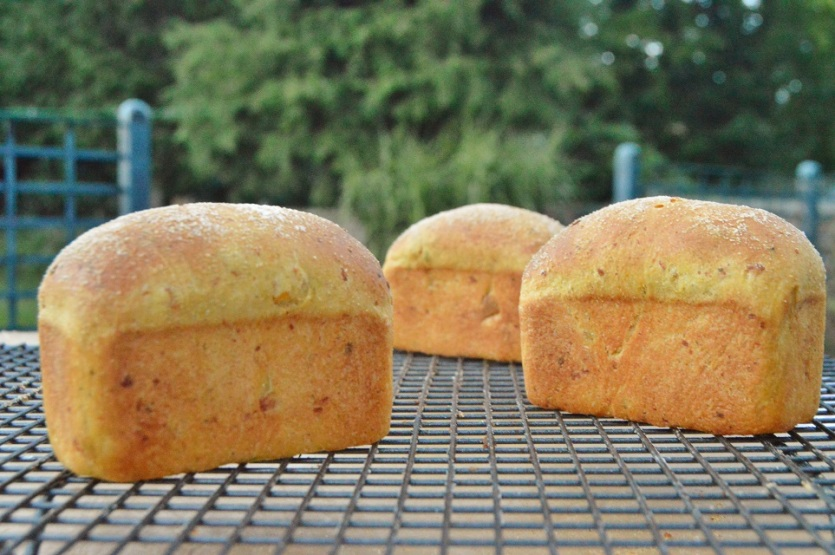 Spiced pumpkin bread: mini loaves