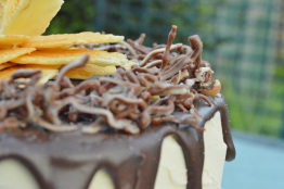 """""""Death by Chocolate"""" drip cake: chocolate """"worms"""""""