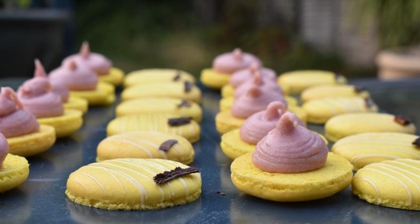 assembling lemon and raspberry macarons