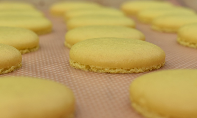 macarons baked and left to cool on the tray