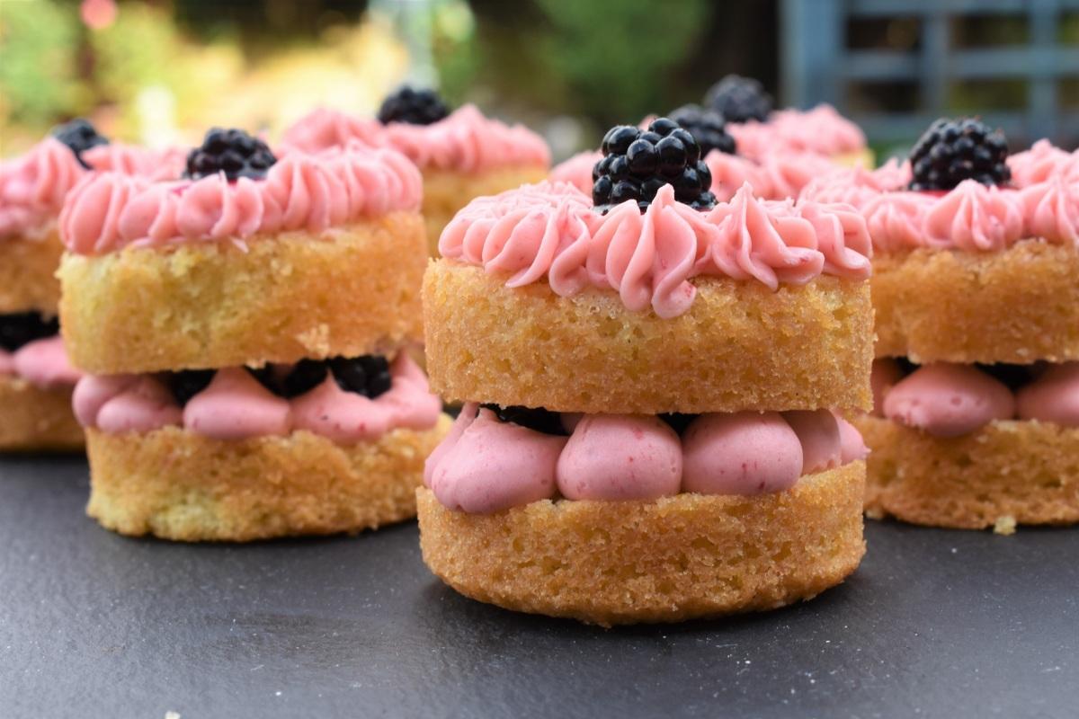 Mini blackberry spongecakes